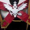 FGO Fate/Grand Order Rider Of Black Astolfo Cosplay Costume 2